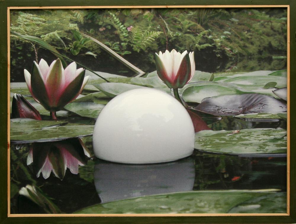 waterlelielamp-bol